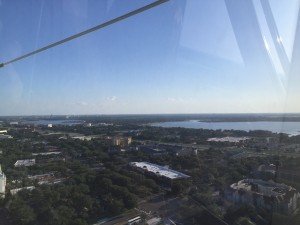 At almost the exact center, near the horizon, you can just make out Epcot's Spaceship Earth